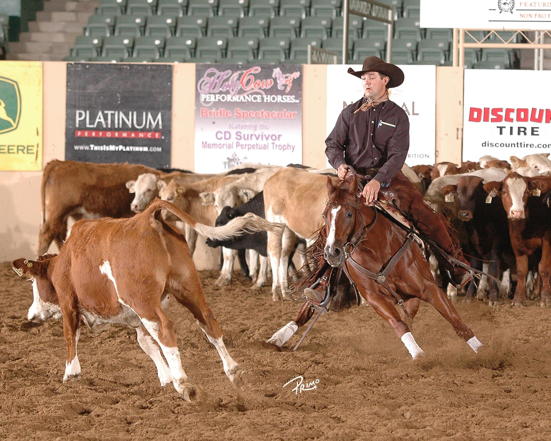 Shiney Nu Annie & Chris Dawson Top NRCHA Aaron Ranch Derby Open
