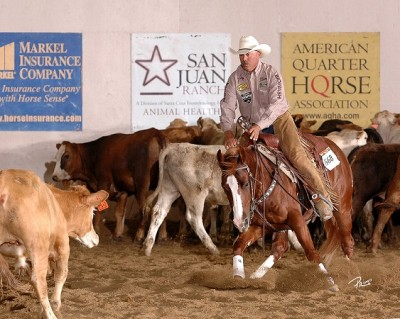 Derby Intermediate Open Champion, Cats Smart Oak, shown by Mark Luis.