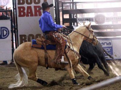 Zoetis AQHA Ranching Heritage Challenge