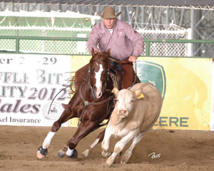 Sinful Cat - 2012 NRCHA Open Derby Champion