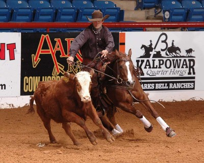 Chris Dawson and Shiney Nu Annie won the Aaron Ranch Cow Horse Classic Derby Open by 3 points