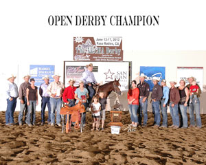 Sinful Cat NRCHA Open Derby Champion Award Photo