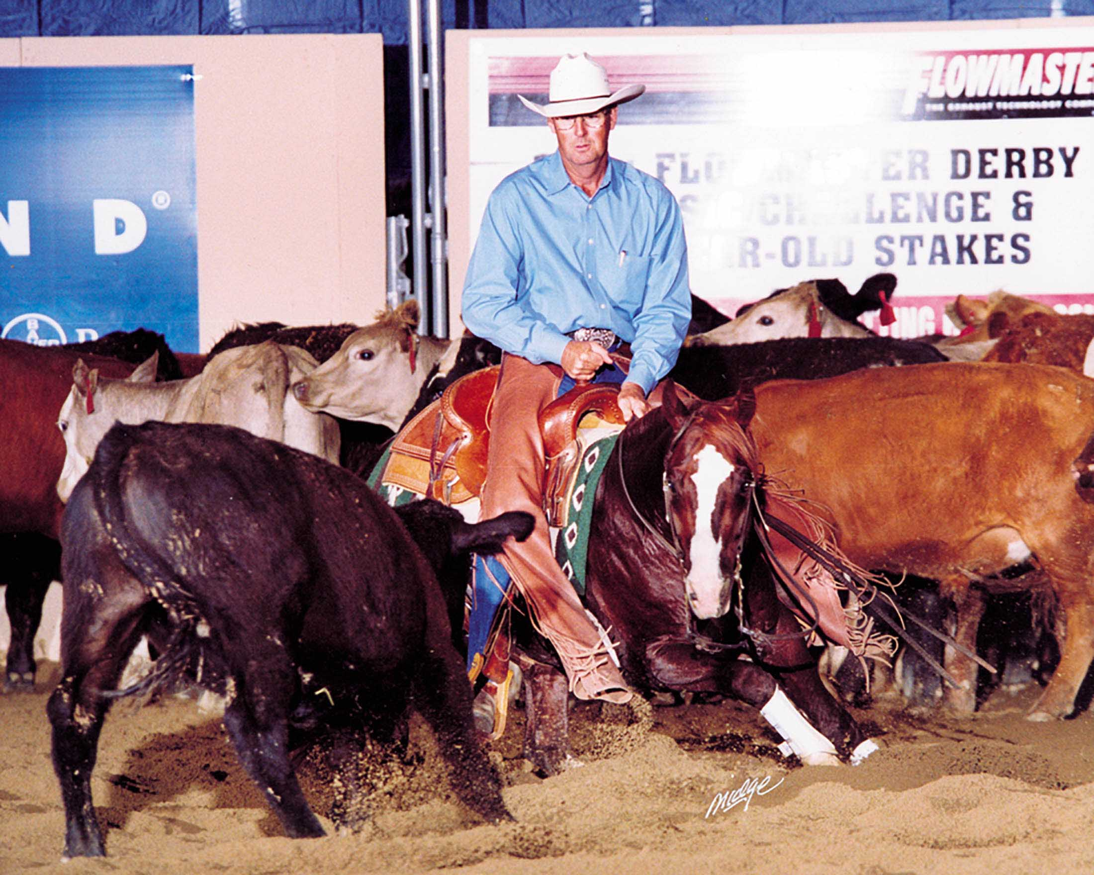 Fenimore & Misplaced Cat Win NCHA Futurity Amateur Championship With Large Late Score