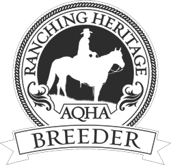 AQHA Ranching Heritage Breeder