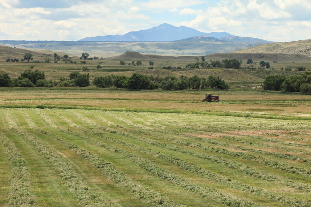 Farm Landscape Wyoming