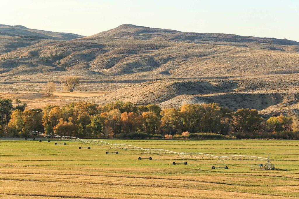 Farming Wyoming