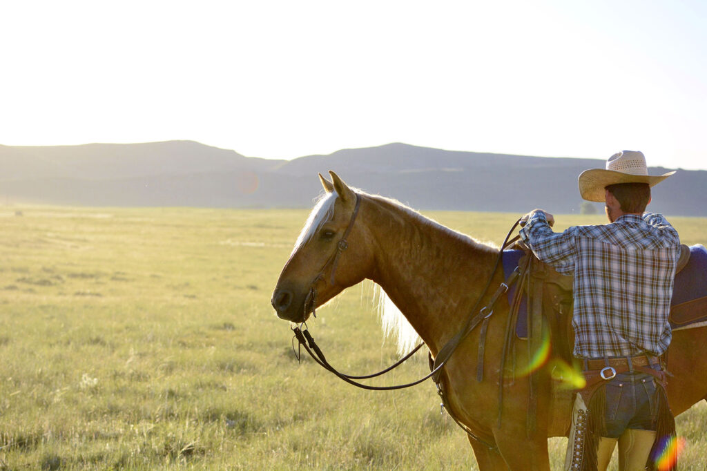 Riding Horse in Wyoming