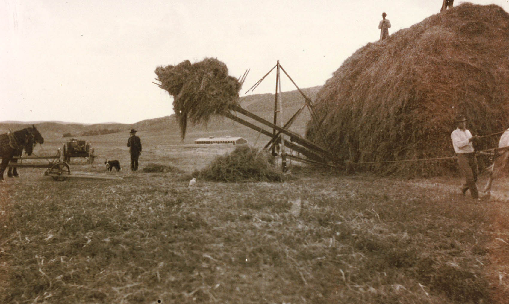 Wagonhound Land & Livestock History