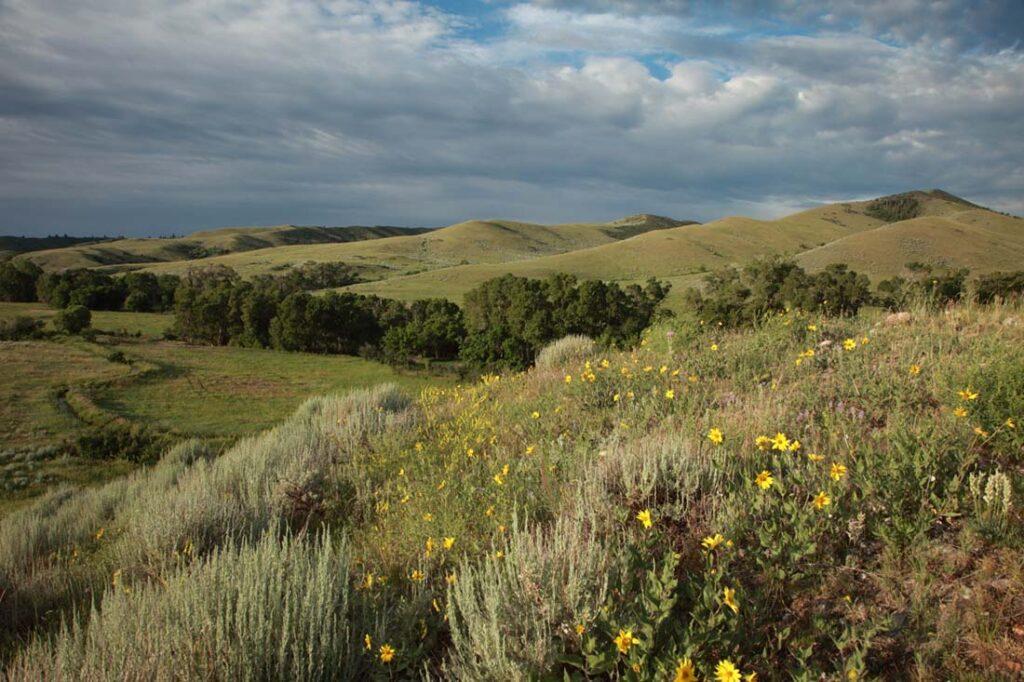 Wyoming Landscape Photo